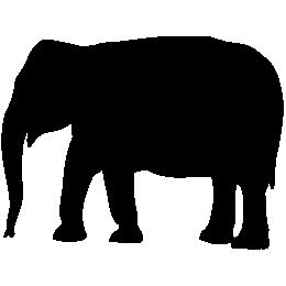 kphmph.wordpress.com-big-elephant-id