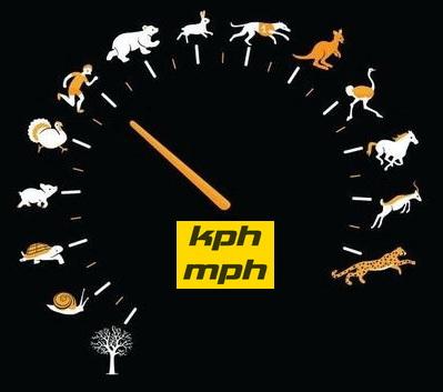 kphmph.wordpress.com-speedo-hewan