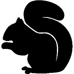 kphmph.wordpress.com-squirrel-id