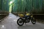 Kawasaki_Bajaj_Pulsar_200NS_27
